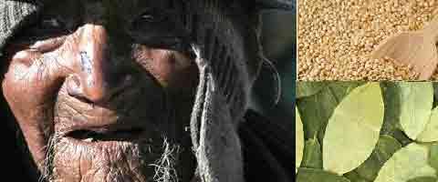 Imagen-El achachila Carmelo atribuye su longevidad a la quinua y coca