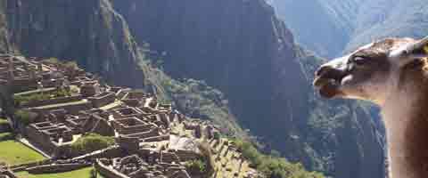 Imagen-Descubren un tunel al Machu Picchu escondido en la selva hace 500 años