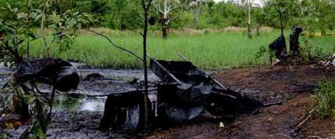 Imagen-Ecuador: ¡Basta a la explotacion de petroleo en la Amazonia!