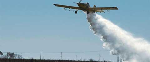 Imagen-Comite Interinstitucional Contra las Fumigaciones CIF, solicita Accion Peticion Informacion Publica