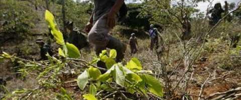Imagen-Situacion de los Derechos Humanos en la Frontera Colombo – Ecuatoriana