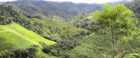 Imagen-Video: Javier Ramirez nos habla desde Intag - Ibarra, Ecuador