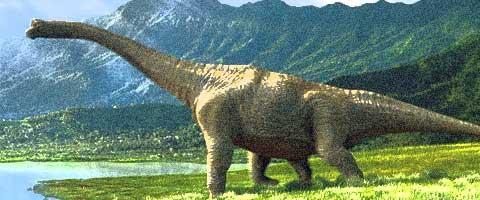 Imagen-La sexta extincion masiva