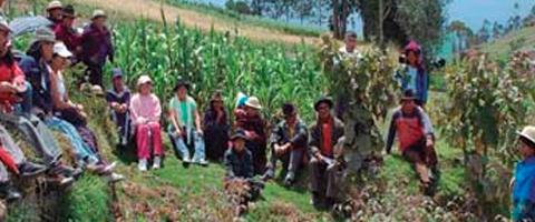 Imagen-Colombia: Accion urgente! Amenazas y hostigamientos sistematicos contra la asociacion de mujeres productoras del campo