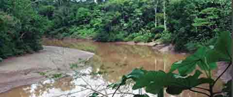 Imagen-Ecuador: La doble moral de Correa
